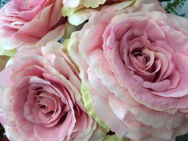 """Résultat de recherche d'images pour """"roses de Troyes"""""""
