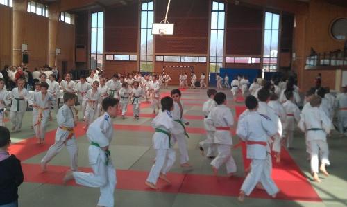 Mois de Mars: de bons résultats aux Judo Club.