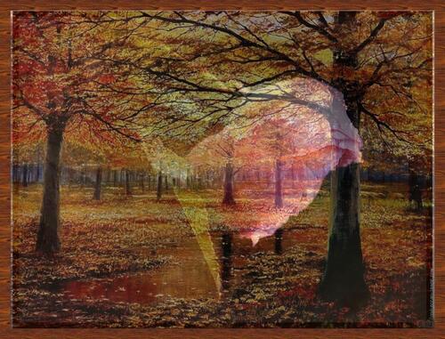 Un peu d'automne ...