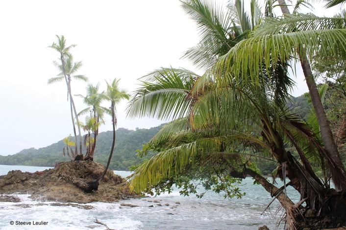 Costa Rica : la côte Pacifique