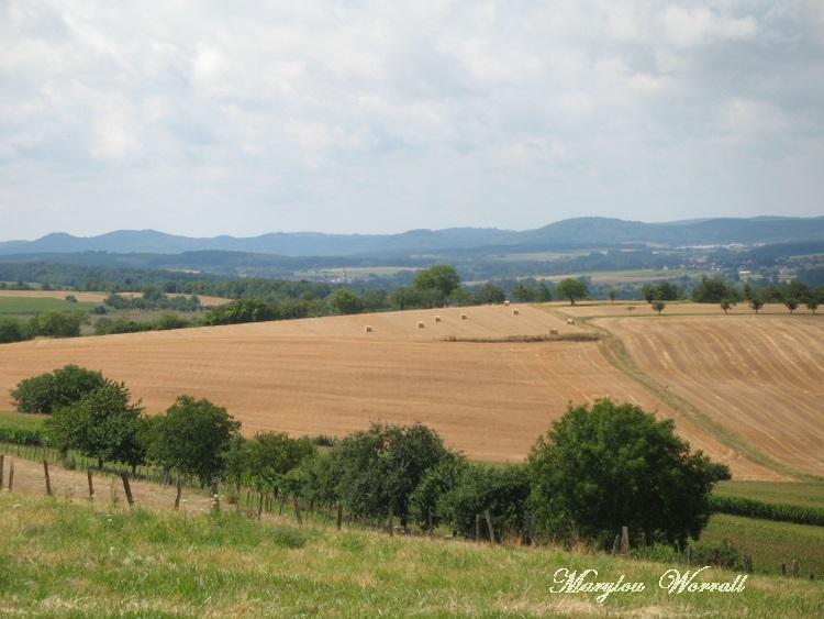 La campagne du nord de l'Alsace