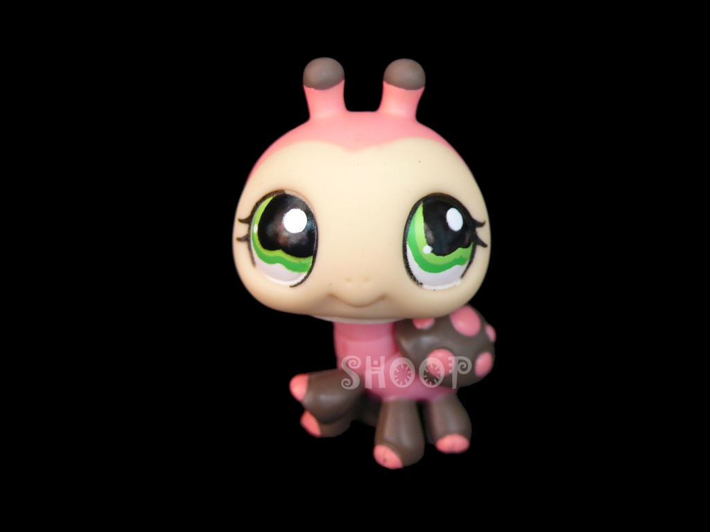 LPS 1264