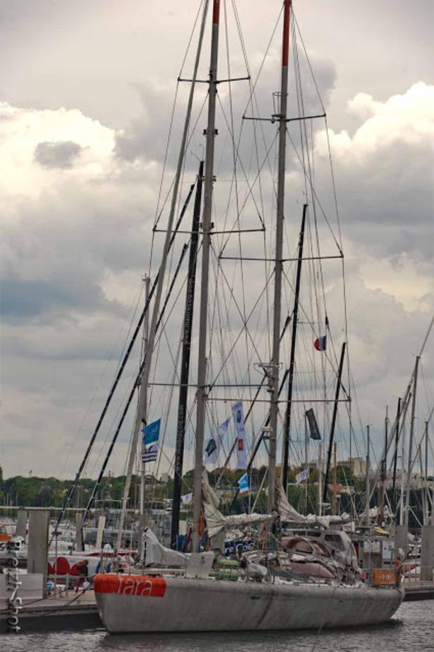 Tara Oceans Polar Circle,  Cité de la Voile : Lorient