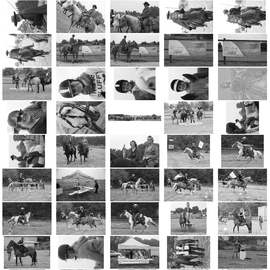 Planche Contact 11