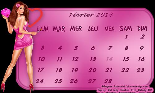 Défi Calendrier du 1e au 14 février 2014