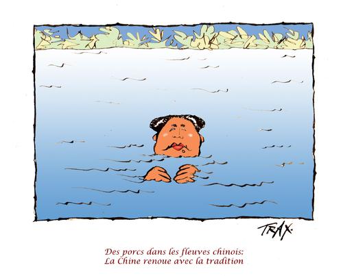porcs  virus  fleuve de Chine Mao nage