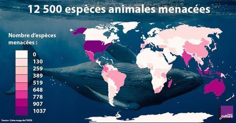 Carte de la répartition des espèces animales menacées dans le monde
