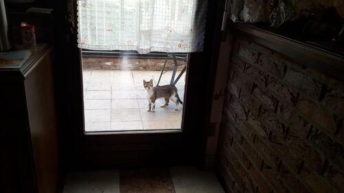 Un visiteur