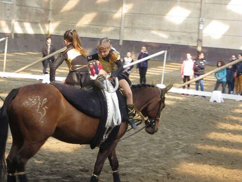 Compétition voltige St Sylvestre Cappel 2019