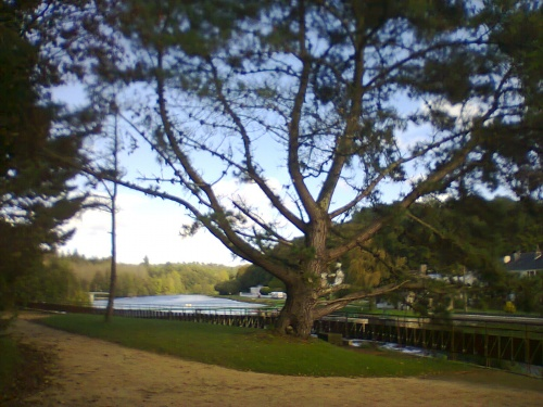 ♣Parc d'eau vive à Lochrist♣