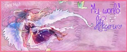 Commande de Hikaru♥