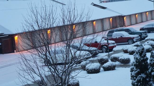 Dear diary: les premières neiges de novembre.