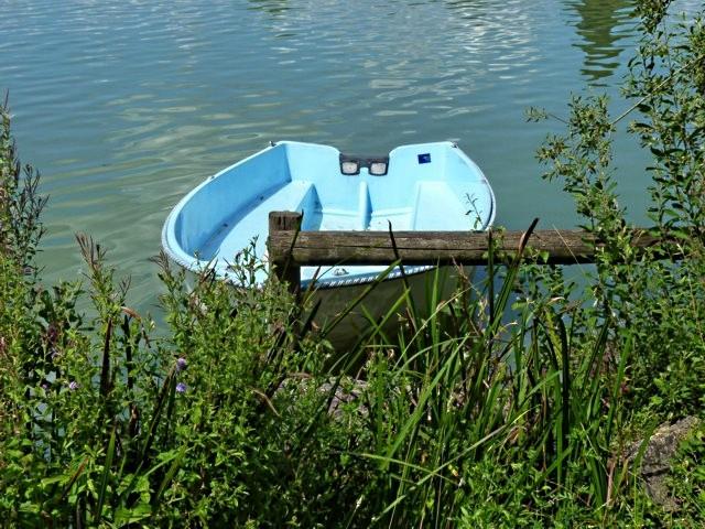 Lac de Vesoul-Vraivre - 16