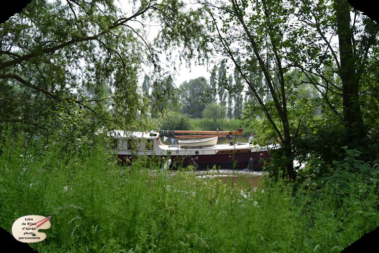 Rivière 14