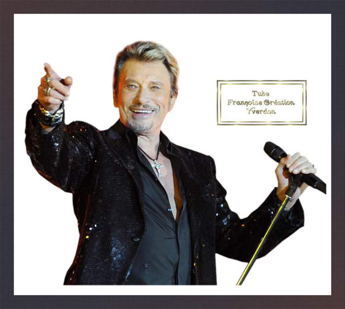 Johnny Halliday (11 à 20)