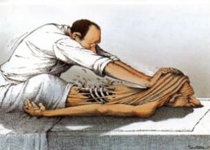 L'Ostéopathie ancestrale