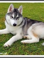 Oria (5,5 mois)