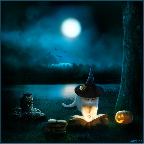 Montage Chat Halloween Fantaisiste