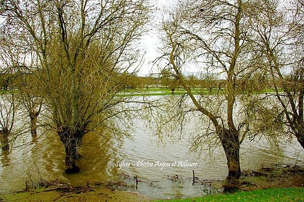 Loire-en-Hiver 6547ob