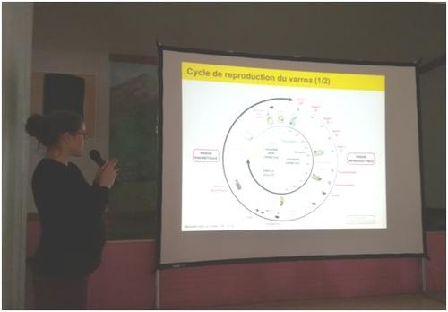 Journée d'intervention Parc national des Ecrins Informations et échanges apiculteurs des Alpes