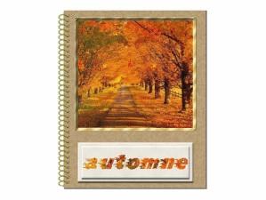 automne.gif