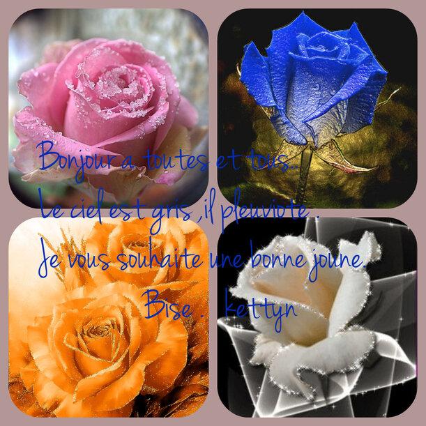 le.9.5.2018. Fleur de lys : signification, symbole et histoire