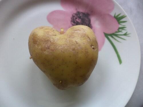 Un coeur ...