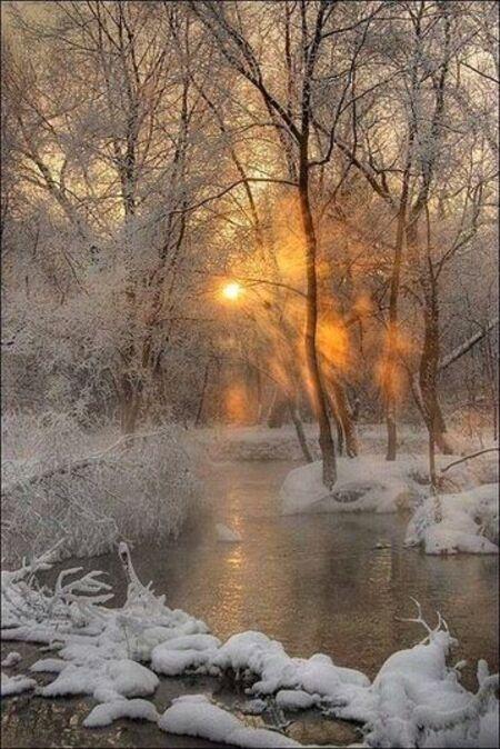 Splendeur d'hiver