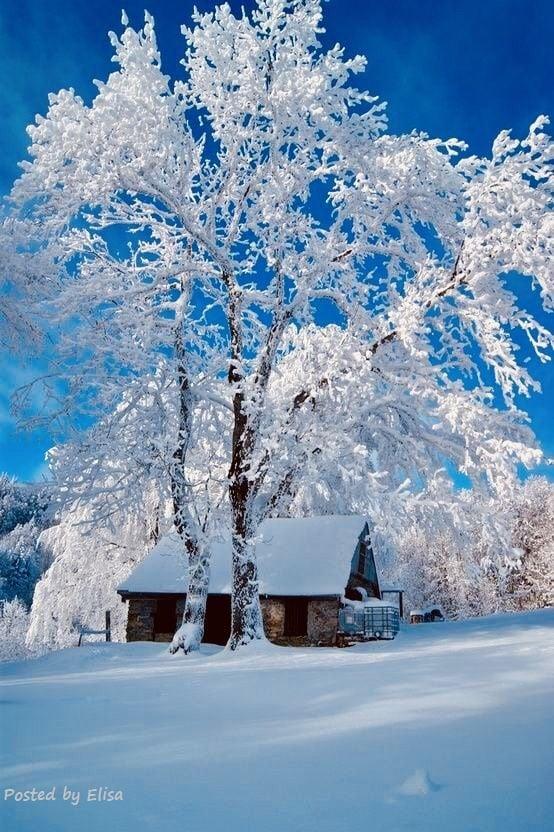 Mon pays c'est l'hiver