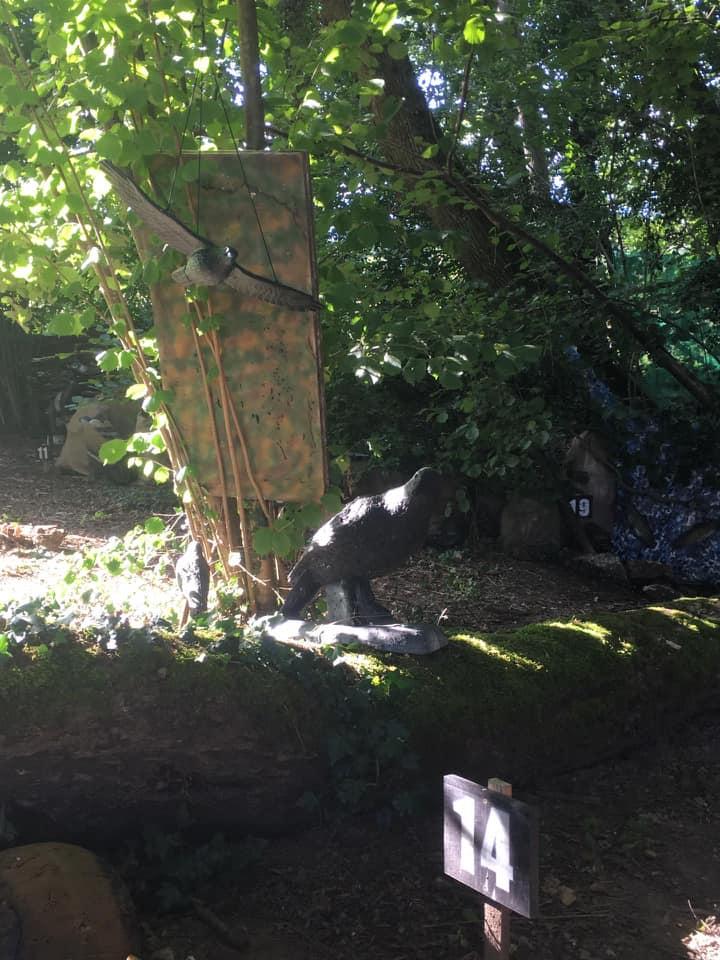 L'image contient peut-être: arbre, plante et plein air