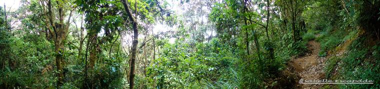 13 Juillet 2018 - Première randonnée à la frontière Java Centre Java Est