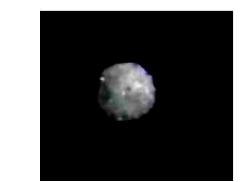 orbe 17-0019C