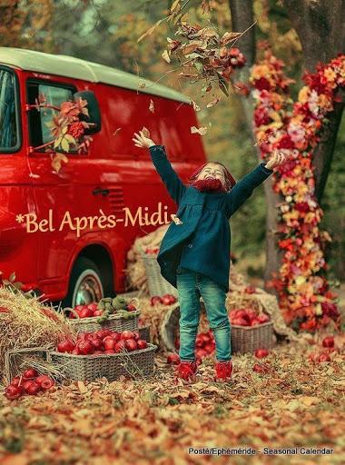 BEL APRES MIDI