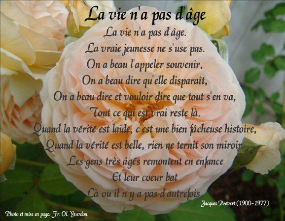 Rubrique Citations