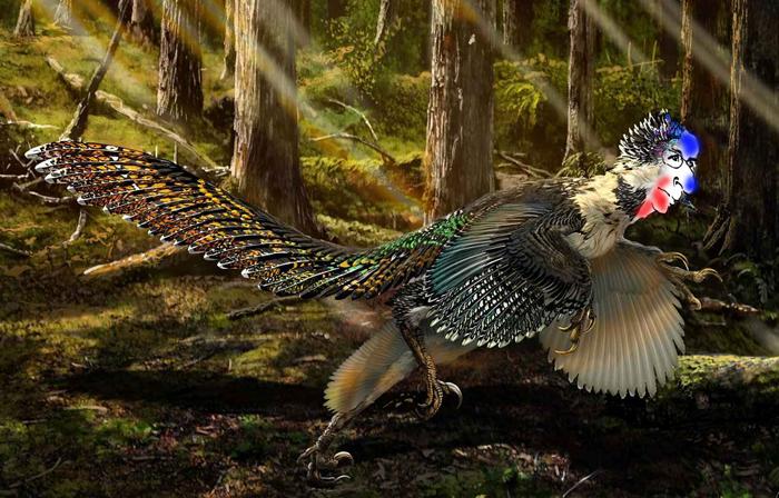 dans la province de Liaoning, en Chine  © Le Télégramme - Plus d'information sur http://www.letelegramme.fr/monde/chine-decouverte-d-un-cousin-a-plumes-de-l-effrayant-velociraptor-17-07-2015-10708875.