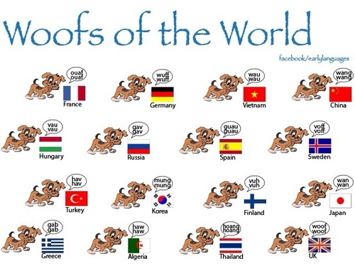 Woofs of the world