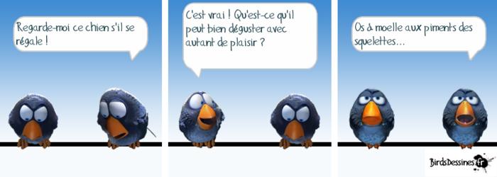 Les oiseaux du samedi.... 27)