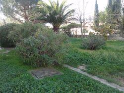 Jardins bât 1 & 2