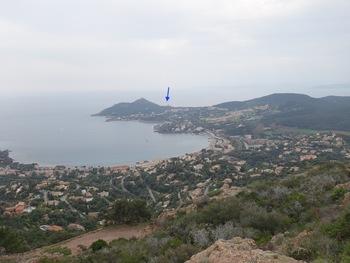 """La Baie d'Agay. Au fond, derrière le Dramont, on devine l'île d'or, qui servit de modèle à Hergé pour l'album """"l'île Noire"""""""