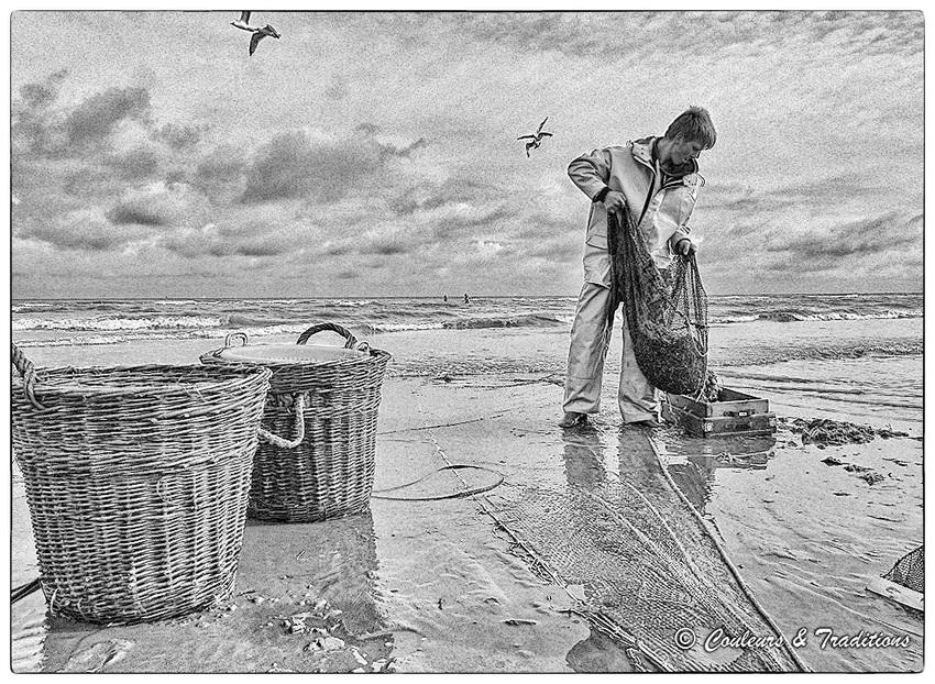 Pêche aux crevettes grises