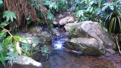 La Forêt Départemento-domaniale de la Roche Écrite