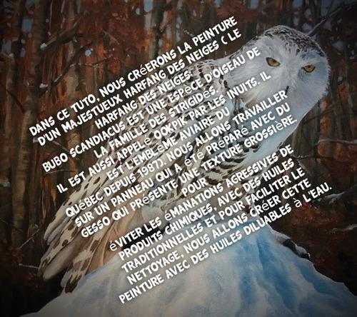Dessin et peinture - vidéo 3507 : Comment peindre un hibou des neiges 1/2 (arrière-plan) ? - huile diluable à l'eau