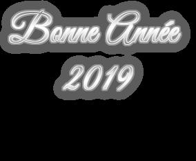 BONNE ANNEE 2019 PNG