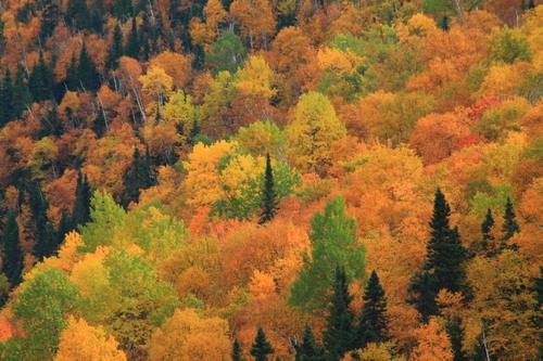 Notre Road Trip région Québec Canada part 5