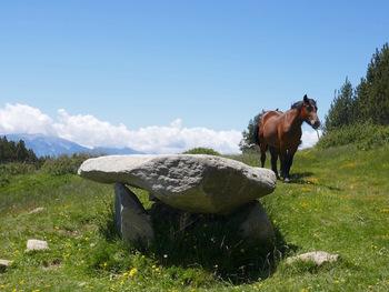 Le dolmen et un visiteur
