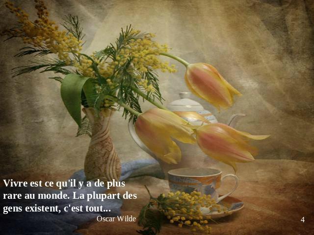 Bon après-midi à toutes et à tous, - La nouvelle Marie des vignes