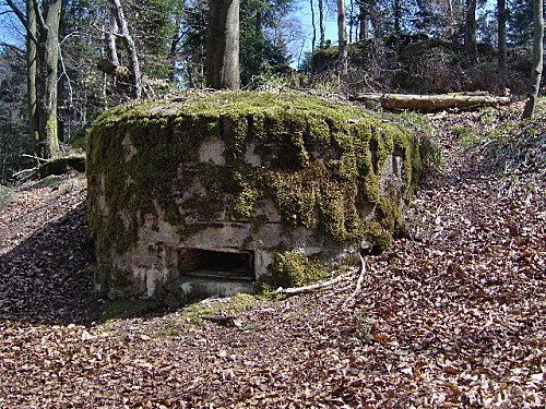 roche pierre piquee neuvevoie derzognier 037