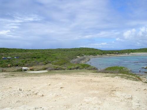 La Guadeloupe (suite)