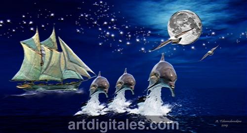 Le saut des dauphins