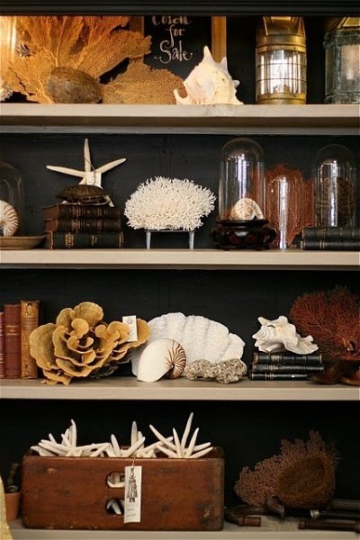 Id e d co 3 les cabinets de curiosit s d co en nuances - Meuble cabinet de curiosite ...